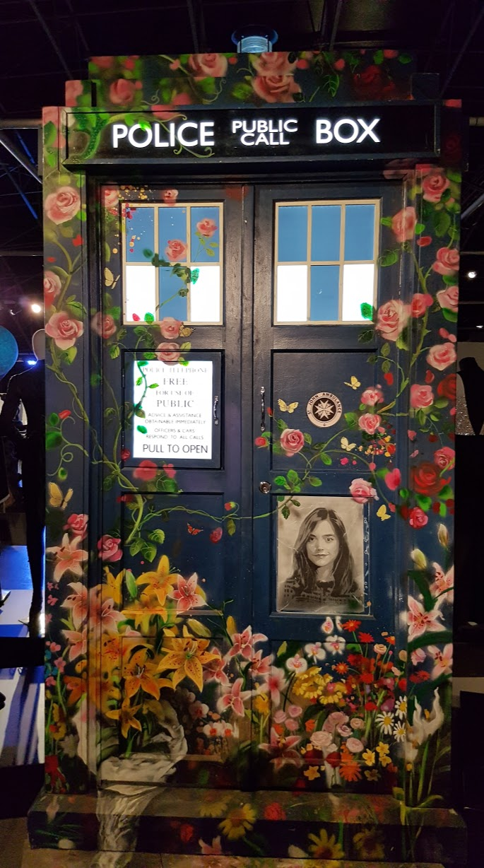 Painted_TARDIS_DW_Experience
